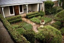 herb-garden2