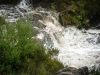 swim_in_our_falls